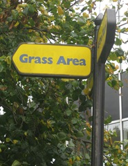 Grass area that way